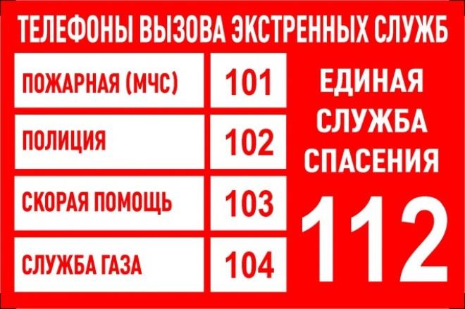 Главной задачей, стоящей перед ОМВД России по Смидовичскому району во время мероприятий с массовым пребыванием людей, является обеспечение охраны общественного правопорядка и безопасности граждан.